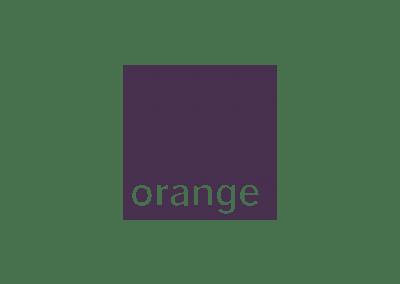 Orange et IBM – Team building pour rapprocher deux DSI