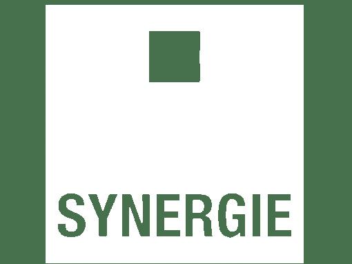 Un parcours d'intégration gamifié chez Synergie