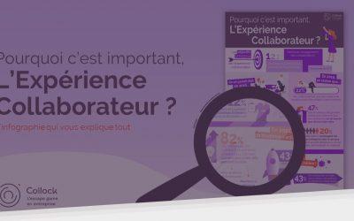 L'expérience collaborateur : pourquoi c'est important ?